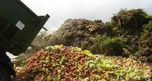 non-au-gaspillage-alimentaire