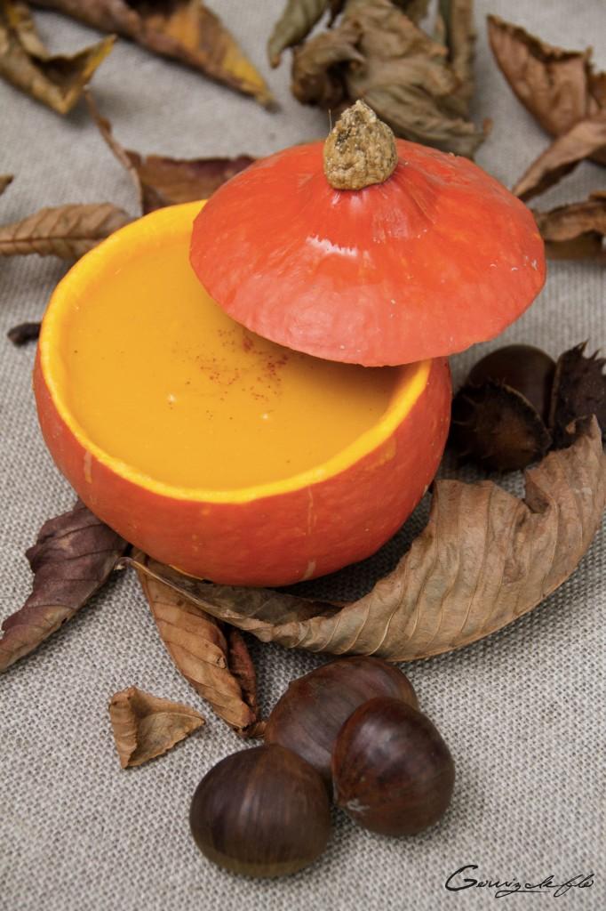 soupe-potiron-marron