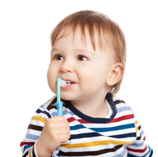 brosser-les-dents-de-bebe