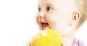 pomme-pour-bebe