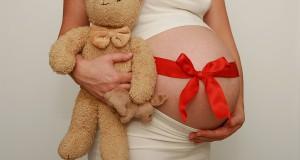 enceinte-a-noel