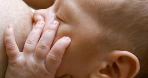 crevasses-allaitement