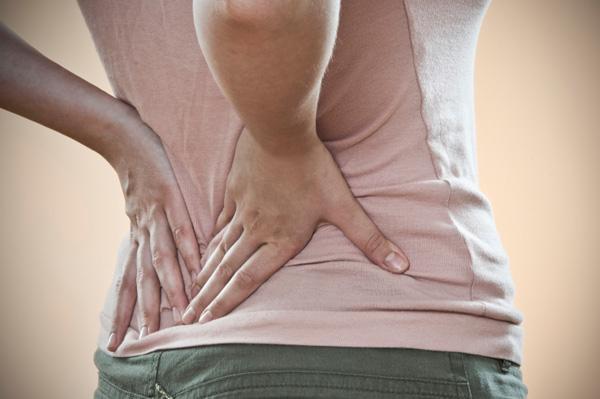 Tout sur les sangsues le traitement de lépine dorsale