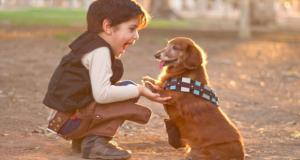 enfant a peur des chiens