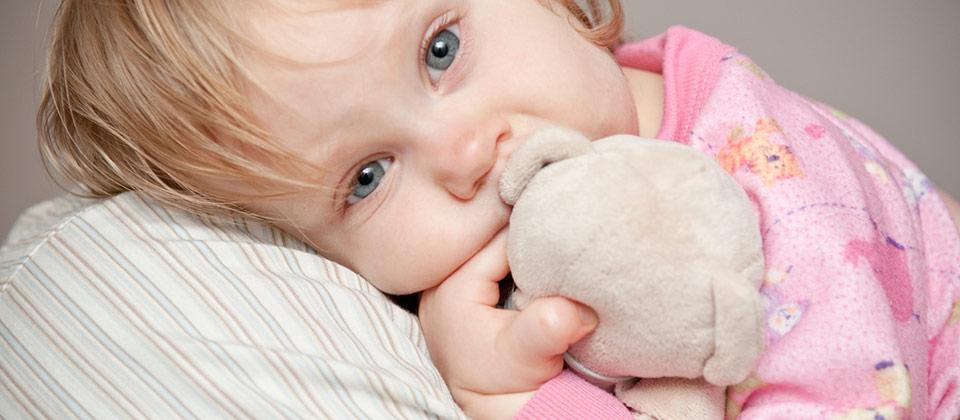 doudou-bebe